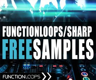 function loops free samples