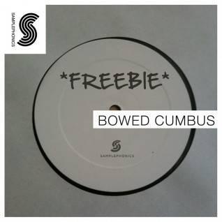 bowed-cumbus_1024x1024