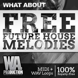 WhatAboutFreeFutureHouseMelodiesCover-250x250
