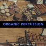 echo_sound_works-organic_percussion