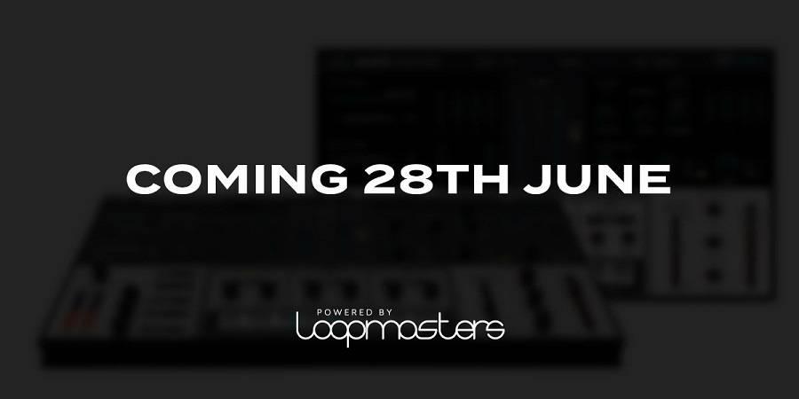 loopmasters bass master vst