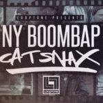Loopmasters released NY Boom Bap_5d1e244d290b8.jpeg